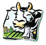 logo-arvd